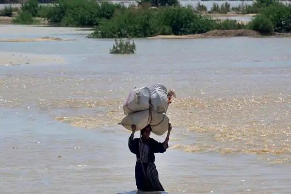 पाकिस्तान में भारी बारिश से मचा हाहाकार, 158 घर पूरी तरह तबाह, 20 गांव जलमग्न, 58 लोगों ने गवाईं जान-देखें तबाही की कुछ भयावह तस्वीरें