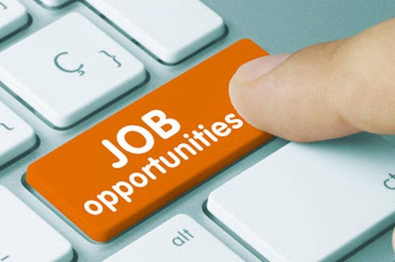 बिना परीक्षा के सरकारी नौकरी प्राप्त करने का सुनहरा मौका, पढ़ें पूरी Detail