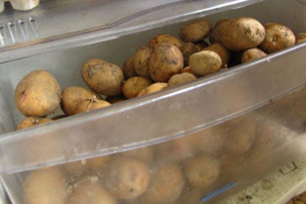 सावधानः फ्रिज में रखें आलू खाने से हो सकते हैं कैंसर के शिकार, पढ़ें पूरी जानकारी