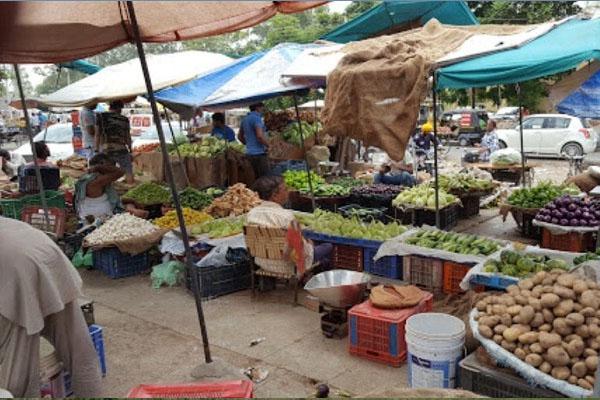 जालंधर की मकसूदां सब्जी मंडी में व्यापारी और रेहड़ी वाले धरने पर बैठे, जानें क्या है पूरा मामला