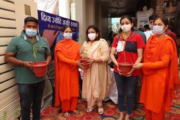 दिव्य ज्योति जाग्रति संस्थान द्वारा लगाया गया कोरोना वैक्सीनेशन कैंप, 300 से ज्यादा लोगों को बांटे गए तुलसी के पौधे