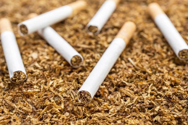 Read more about the article पंजाब में तंबाकू बेचने वालों पर चन्नी सरकार सख्त, लिया यह बड़ा फैसला